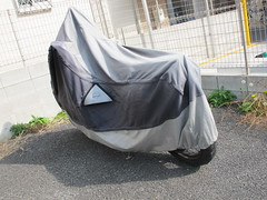 covered (Samm Bennett) Tags: japan tokyo wrapped covered shrouded draped