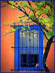 "Blue Window (NaturaLite's ""SnapDecisions"") Tags: arizona nikon tucson d800 frameit photogene elbarrioviejo photoshopcs6"