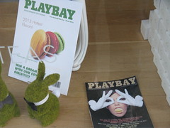2013-04-08 3076 Hayes Valley - Topiary Bunny with Playbay Issues (Dennis Brumm) Tags: sanfrancisco april hayesvalley 2013 playbay