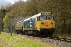 "Class 50 ""Hood"" At Bank Farm (Simon Crowther Photography) Tags: heritage history train flickr br railway preserved svr arley severnvalleyrailway britishrailways arleystation westernregion"