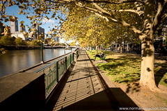 Autumn afternoons - Southbank, Melbourne Australia (Keystone Photography) Tags: repacholi keystone pentaxk3 southbank melbourne victoria australia longexposure urbanlife motion yarra river water autumn leave shadows patterns repetition