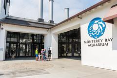 Monterey Bay Aquarium (mojave955) Tags: california   unitedstatesofamerica northamerica usa westcoast    norcal northerncalifornia  montereybay aquarium  montereybayaquarium canon 7dmarkii