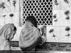 Untitled (Amna Yaseen) Tags: women pray urs annualcelebration saintsufi lattice poet bullehshah shrine kasur