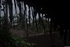 Waking up in the shacks! (SarjakThakkar) Tags: sunrise sun moring morning shacks puducherry india hut nature natural