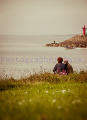 2 Lovers. (Photographer Dave C) Tags: photography photographerdave passion photograph people landscape lovers bangor beauty birds glass sky stunning sea seascape summer canon canon40d canonofficial mygearandme mymindseye