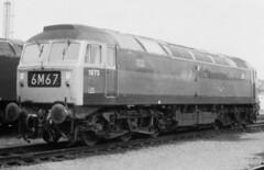 1973. (curly42) Tags: d1973 1973 class47 duff brushtype4 haymarket 64b railway britishrail