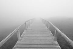 Into the mist (J. Rubinart) Tags: asturies cantbria nordpennsula covadonga puente pont bridge wood madera fusta boira niebla fog mist foggy weather blackwhite blancinegre blancoynegro bw symmetric
