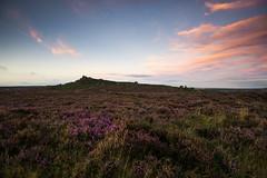 Over Owler Tor (l4ts) Tags: landscape derbyshire peakdistrict darkpeak overowlertor heather moorland goldenhour eveninglight sunset gritstone gritstonetor millstoneedge