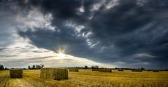 harvest gold (muskokaTIMe) Tags: haybalesrectangular bales harvest farm field landscape clouds sunburst panorama first hay gold golden