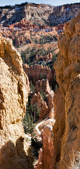 Bryce Hikers (dbpeterson723) Tags: brycecanyonnatlpark hiking perspective trail southwest natlparks southwestgeologyfeature rockformations