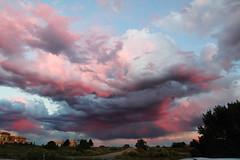 IMG_5256 (Anna Gurule) Tags: skycolors sky pinkclouds pinkskies colors artedgy annagurule annaortizgurule