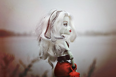 It Took a Moment Before I Lost Myself in Here (EliMalone) Tags: frankie stein freak du chic red fog foggy morning nature outdoors landscape evening monster monsterhigh mattel doll blonde frankenstein mist misty purrsephone meow river water forest ghoul scar