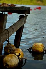 Muelle San Pedro (gonzalez asencio) Tags: agua water lago vacaciones vacation sun boyas buoy muelle pier lagoon