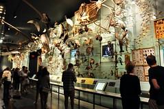 Hall of Biodiversity (markusOulehla) Tags: americanmuseumofnaturalhistory nyc newyorkcity markusoulehla nikond90 citytrip thebigapple usa manhattan