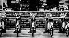 """Velo"" #black #bnw #blackandwhite #velo #city #flickrturkey #flickr #flickrfriday #flickrheroes #monochrome #izmir #cycle (cemmutlu) Tags: black bnw blackandwhite velo city flickrturkey flickr flickrfriday flickrheroes monochrome izmir cycle"