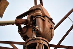14 foot IBC Geared Simplex windmill; Inglewood, Queensland, Australia (sarracenia.flava) Tags: ibc intercolonial boring company windmill geared simplex inglewood queensland australia