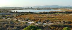ria formosa (Marek K. Misztal) Tags: faro riaformosa portugal portugalia panorama algarve