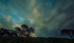 Epically (Paul-Boer Putter) Tags: signalhill southafrica sunset trees capetown clouds noflash fisheye