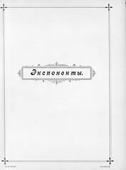 1896.       . __072 (foot-passenger) Tags:  1896   nlr nizhnynovgorod