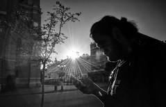 morning glory (Zlatko Vickovic) Tags: streetstreetphoto streetphotography streetphotographybw streetbw streetphotobw blackandwhite monochrome zlatkovickovic zlatkovickovicphotography novisad serbia vojvodina srbija