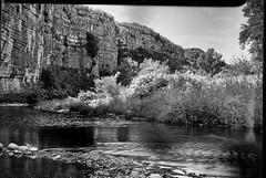 Chassezac river (salparadise666) Tags: nils volkmer busch pressman c 2x3 fomapan 100 sheet film caffenol rs france cevennes landscape bw black white nature river rural contrast wollensak 101mm