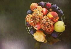 Natura viva, variazione n. 3 - Living nature, variation n. 3 (Jambo Jambo) Tags: frutta fruits natura nature naturaviva livingnature naturamorta stilllife jambojambo sony dscrx100 watercolor