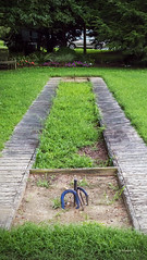 Brian_Kennersley Marina Horseshoes 1_LG_073116_2D (starg82343) Tags: