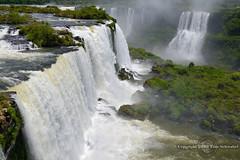 Jungle Oasis (pdxsafariguy) Tags: brazil mist argentina waterfall unesco cataratas iguazu devilsthroat gargantadeldiablo iguazufalls tomschwabel cataratasdeliguazu