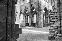 "Tintern Abbey • <a style=""font-size:0.8em;"" href=""http://www.flickr.com/photos/32236014@N07/8635087891/"" target=""_blank"">View on Flickr</a>"