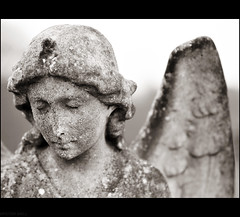 Angel With Wings (peterphotographic) Tags: uk england blackandwhite bw monochrome cemetery grave graveyard angel wings nikon dof britain head tomb tombstone plymouth sigma depthoffield devon f28 westcountry angelwings peverell blackwhitephotos sigma70210f28 fordpark fordparkcemetery d300s camerabag2 dsc5999cb2edwm