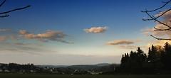 vom Goldenen Hahn Blick zur Augustusburg