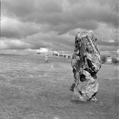 A rock (The Old Penfold) Tags: blackandwhite bw 120 6x6 film mediumformat square bronica squareformat analogue wiltshire avebury sarsen iso80 sqai 80mmf28 exactollux zenzanonps80mm rolleiretro80s