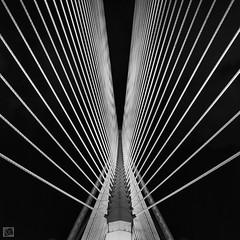 Split (Shahrulnizam KS) Tags: bridge blackandwhite black metal architecture modern photography nikon artistic malaysia string split putrajaya gettyimage