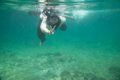 IMG_0893 (king.arm) Tags: trip travel sea vacation holiday fish elephant beach water coral thailand island boat amazing interesting underwater crystal getaway speedboat snorkelling tuktuk siam longtail krabi aonang tigerfish