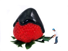 Just in Case (cathy.scola) Tags: miniature strawberry chocolate drip ho littlepeople onwhite tinypeople hofigures