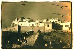 essaouira (thomasw.) Tags: travel bw analog 35mm northafrica morocco maghreb lith sw essaouira marokko nordafrika