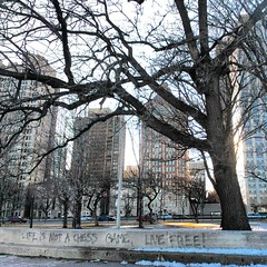 Life is not a chess game (get directly down) Tags: winter lake snow chicago ice beach michigan north chess avenue