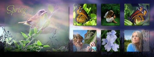 springCollage1Type | FaceBook TimeLine Header