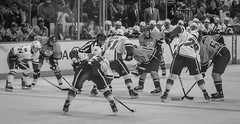 Lined Up (Tom Frundle Photography) Tags: sports hockey nhl tn nashville pentax professional k5 nashvillepredators downtownnashville 2013 nhlhockey bridgestonearena tomfrundlephotography