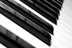 freeimage-6165449-high (Bonvolu) Tags: old musician music white black macro art lines rock closeup education keyboard opera key artist play close audience artistic song antique interior piano ivory jazz player note entertainment organ musical sing orchestra sound instrument classical perform concept lesson tune tunes performer audio tool learn ebony synthesizer chords chorale