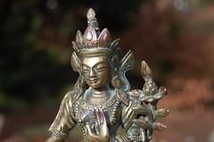 Bodhisattva Green Tara. (TREASURES OF WISDOM) Tags: old whatsthis whatisthis mystery museum bronze wow wonderful religious temple nice fantastic eyes ancient nikon worship view tara lotus folk buddha buddhist magic faith prayer buddhism exhibition religon collection figure sacred offering unknown ritual tibetan longevity nepalese unusual spirituality wisdom om spiritual healing brilliant deity shamanic mystic votive himalayan wealth pagan artefact diety unseen namaste asianart mythical murti ceremonial greentara intresting fantasic lordbuddha godofwisdom ommanipadmihum wisdomfromtheeastwisdomfromthewest chinesesilkroad buddhasandbodhisattvas