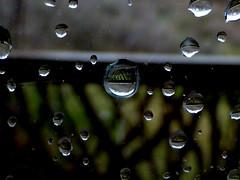Raindrops (The Dolly Mama) Tags: mountains rain june reflections utah spring jim parkcity maril explored 2013