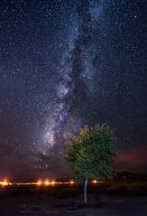 Milky Way (inlightful) Tags: night sky clouds milkyway stars starry nighttime nightsky starrynight astronomy astrophotography southwest desert newmexico tree