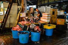 tsukiji-2 (winnieyklai) Tags: tsukiji fish fishmarket market tokyo japan seafood tuna fishhead