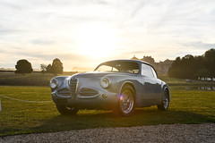 Sunset on Chantilly (3KP) Tags: alfa romeo 1900 css coup italian car made italy auto voiture ancienne classic vintage classique automobile chantilly concours dlgance arts et lgance richard mille 2016