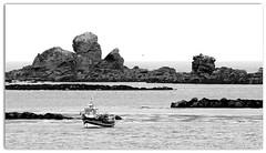 Postcard from Saint Pabu Bretagne (patrick_milan) Tags: noiretblanc blackandwhite noir blanc monochrome nb bw black white landscape sea mer iroisewater brittany bretagne bateau ship boat
