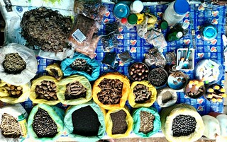 A street shop selling Ayurvedic panacea medicines.