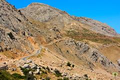 Route reliant les wilayas de Bouira et Tizi-Ouzou via Tikjda (Ath Salem) Tags: algrie tiziouzou at boumahdi tikjda bouira montagne djurdjura main du juif thaletat altitude moutain promenade tourisme dcouverte fort route vertige             stade kabylie