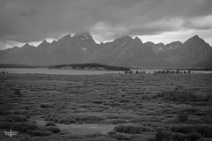 Storms a Rolling in (Marisa Sanders Photography) Tags: tetons grandtetons thegrandtetons nps np gtnp grandtetonnationalpark blackandwhite bw canon canon7d explore outdoors outside gtfoutside gtfoutdoors landscape photography lake