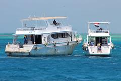 IMG_3154_Hurghada 2016 the best of (Adam Is A D.j.) Tags: wismec vape hurghada egypt red sea mahmya desert rose resorts travel beach sun nature canon 5d mark iii 700d